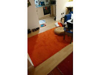 orange rug in good condition & pick up only sorry