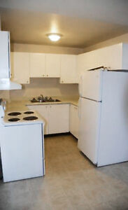 Spacious Apartments in DOWNTOWN London - January 1st!! London Ontario image 2