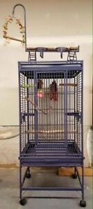 Bird cage with ropes and toys