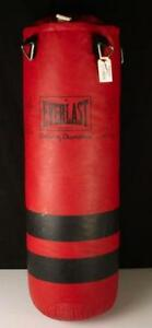 Punching Bag Everlast 100lbs