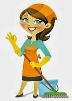 best cleaning service 416 8542826