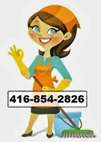 professional cleaning in best price