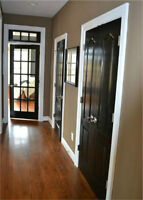 Beautiful French Door (with hardware)