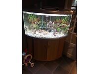 Silver Fish Tank For Sale