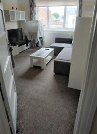 Spacious double bedroom in a flat share