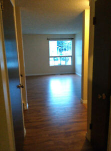 Newly Modern and Renovated 3 Bedroom 1.5 Bath Townhome For Rent