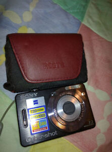 Sony Cyber-Shot DSC-W55 Camera with case and charger