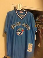 1993 powder blue Toronto Blue Jays jersey - #19 Paul Molitor