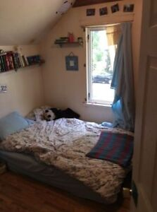 Roommate needed in shared house off whyte ave!