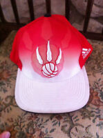 fitted raptors hat 25$