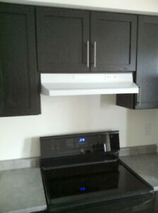 New AIR KING 2 Speed Kitchen Range Hood in White Colour