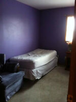 Room for Rent- Available May 1st!