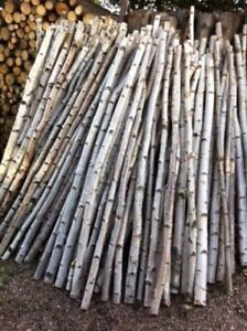 BIRCH POLES/branches-Tealight Candle, planters..etc