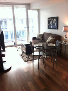 One Bdrm Condo Downtown Ottawa Available August or September