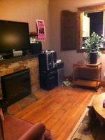 Small 1 bedroom apt - Avail Immediately - South Side
