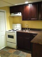 Bright, Spacious, Beautiful One Bedroom Apartment Close to MUN