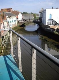 Room to Let in Lovely Shared Riverside Warehouse Flat Central Lewes!