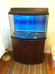 Bow Front glass Fish Tank with stand 35 Gall
