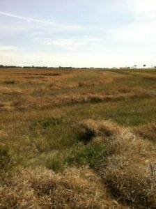 farm acreage for sale 60 ac 10 min from St. Albert AB