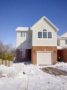 Young Professionals/Grad Students -> Jan-1-2017 move-in Kitchener / Waterloo Kitchener Area image 1