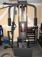 Weider 8630 training system