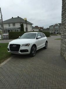 2016 Audi sq5 (black optic)