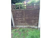 10x fence panels 6ft X 4ft for sale