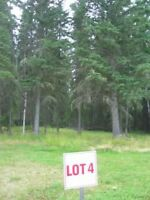 Candle Lake - RTM at Lakeview Estates - For Under $200,000!