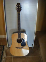 Tradition Acoustic Guitar - Model TG500NAT