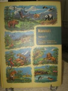 ...An Illustrated BOOK About MAMMALS...