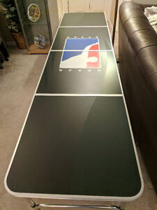 Official Beer Pong Table Rental