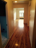 2+ BR in Mile End/Plateau Ensoleillé/Sunny all day!
