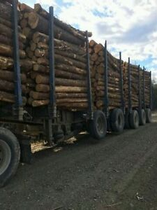 Timmins Logging Trailer