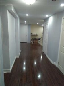 Newly Built 2 Bed Bsmnt apt with ensuite Laundry - Brampton