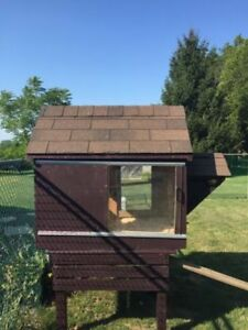 Homemade Coop with Sliding Plexiglass Windows