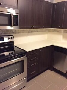 Stunning 2 BDRM! Fully Renovated! 4 Stainless Steel Appliances!
