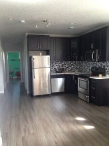 Spacious and newly Renovated walkout Basement