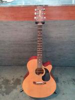 Belle Guitar Jasmine ( by Takamine ) s-34c