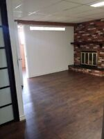 Renovated Basement Suite for Rent!