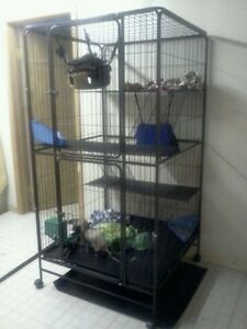 Huge small animal cage