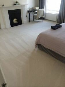 Professional Carpet Cleaning London Ontario image 4