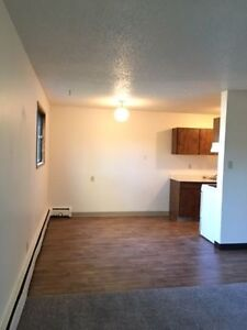 Walking distance to Riverside Public School- 2 Bedroom Apartment