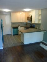 1-BR Renovated in Mt. Royal close to 17 Ave S.W. and D.T.