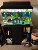 HUGE LOT, two 20g's, stands, fish and supplies