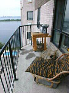 Chambre a louer/Room to rent Brossard water front/bords de l'eau