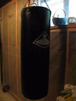 Century Punching Bag with Supportive Chain