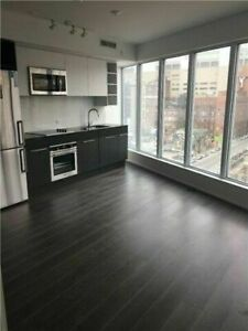 1+1 in Heart of Downtown (Yonge/Shuter)