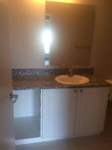 Dec 24 Room in Clean Apartment for Rent All Inclusive Kitchener / Waterloo Kitchener Area image 5