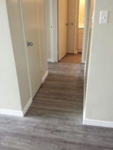 1 & 2 Bedroom Apartments - Newly Renovated Suites Available London Ontario image 4