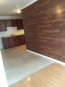 Apr 1st, Beautiful 2+1 M.F. $900 includ-downtown Alexandria